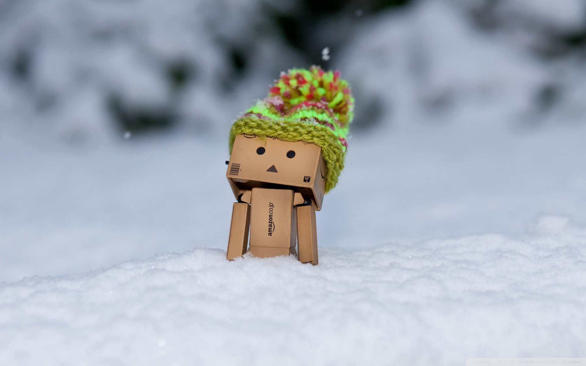 Danbo In Snow