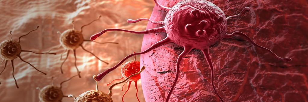 cancer un vaccin radique la totalit des tumeurs chez des souris. Black Bedroom Furniture Sets. Home Design Ideas